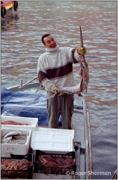 Venice Holding a Swordfish
