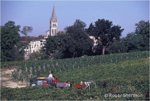 Harvesting in Pavie